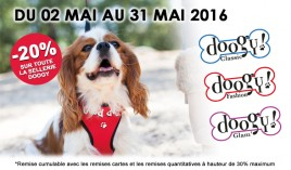 Promotion Doogy: Ayez le total look !