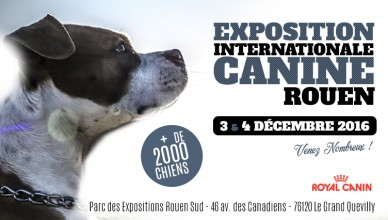 Exposition Canine Internationale Rouen 2016