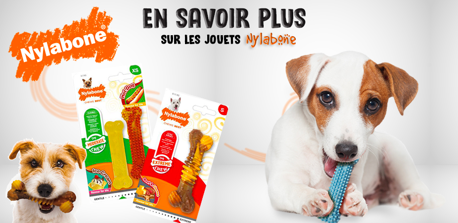 Nylabone, une marque durable